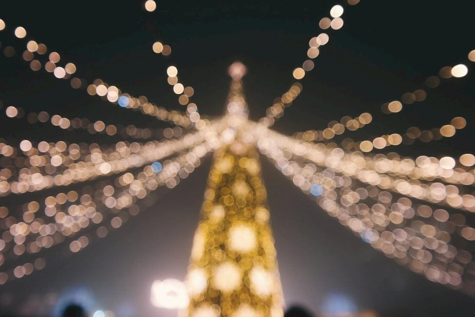 HUNTER VALLEY GARDENS Lights